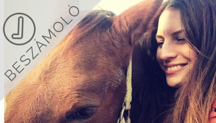 Beszámoló – Nativmethod lovas önismereti tréningen jártunk